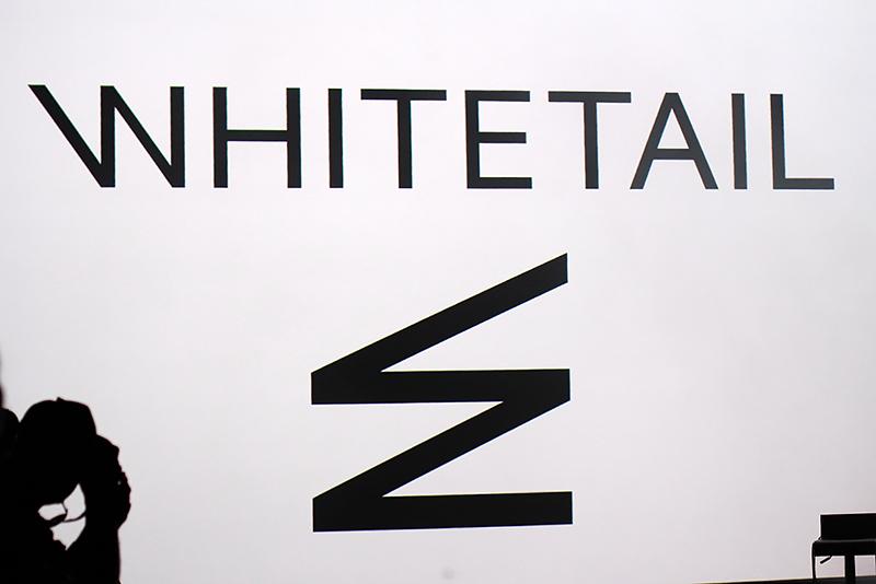 tfw16-whitetail-1