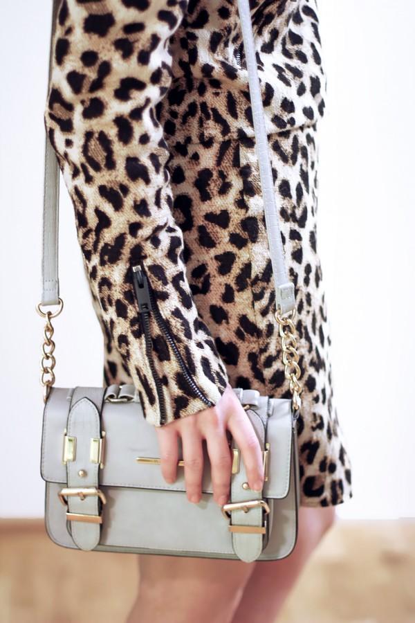 Leopard suit set 3c