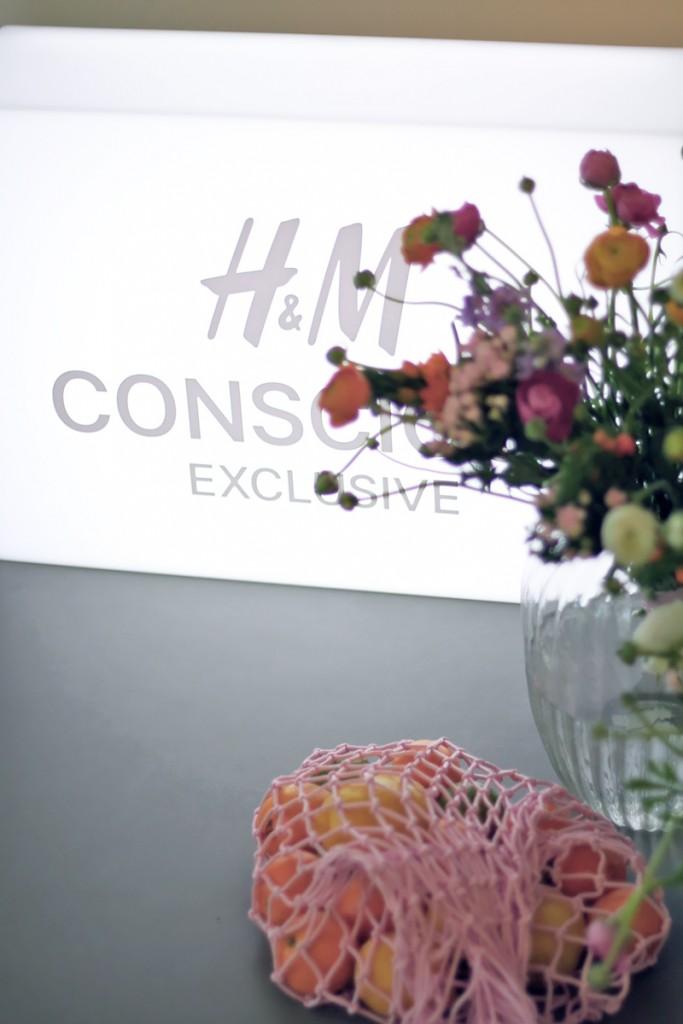 HM Conscious Exclusice 2017 20