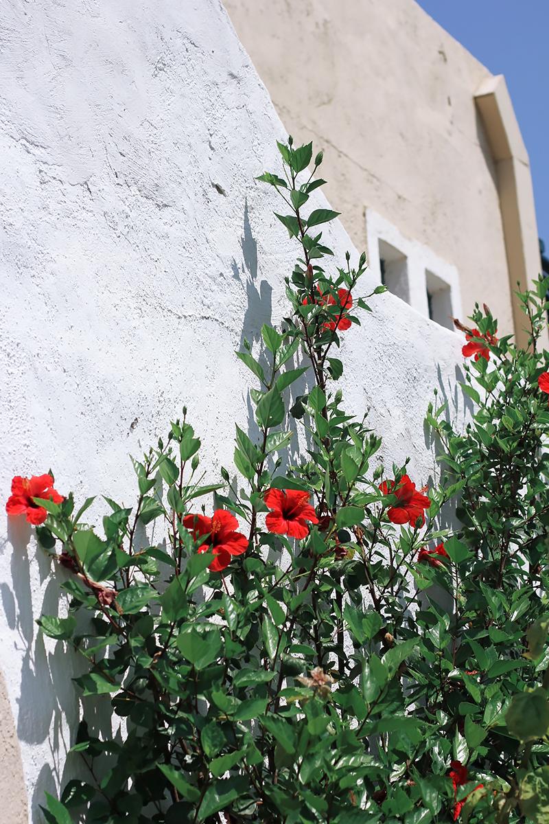 Crete 2017 5