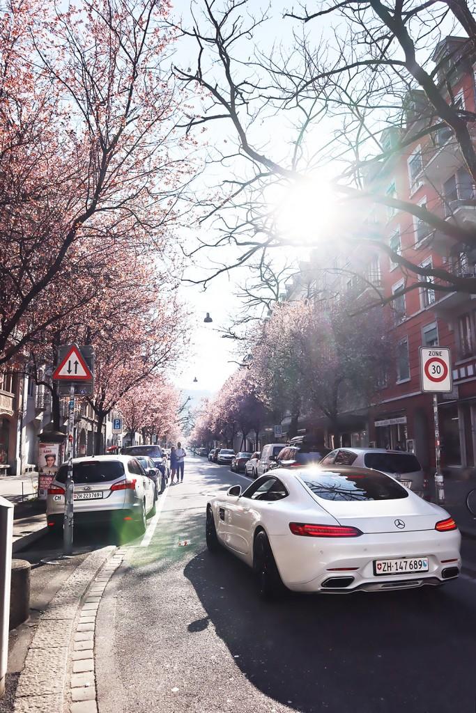 Zurich in Spring